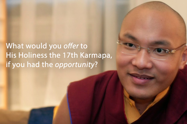 Have you ever wished for the opportunity to offer a gift, to share a meal, or to arrange a bouquet of flowers for His Holiness Karmapa?